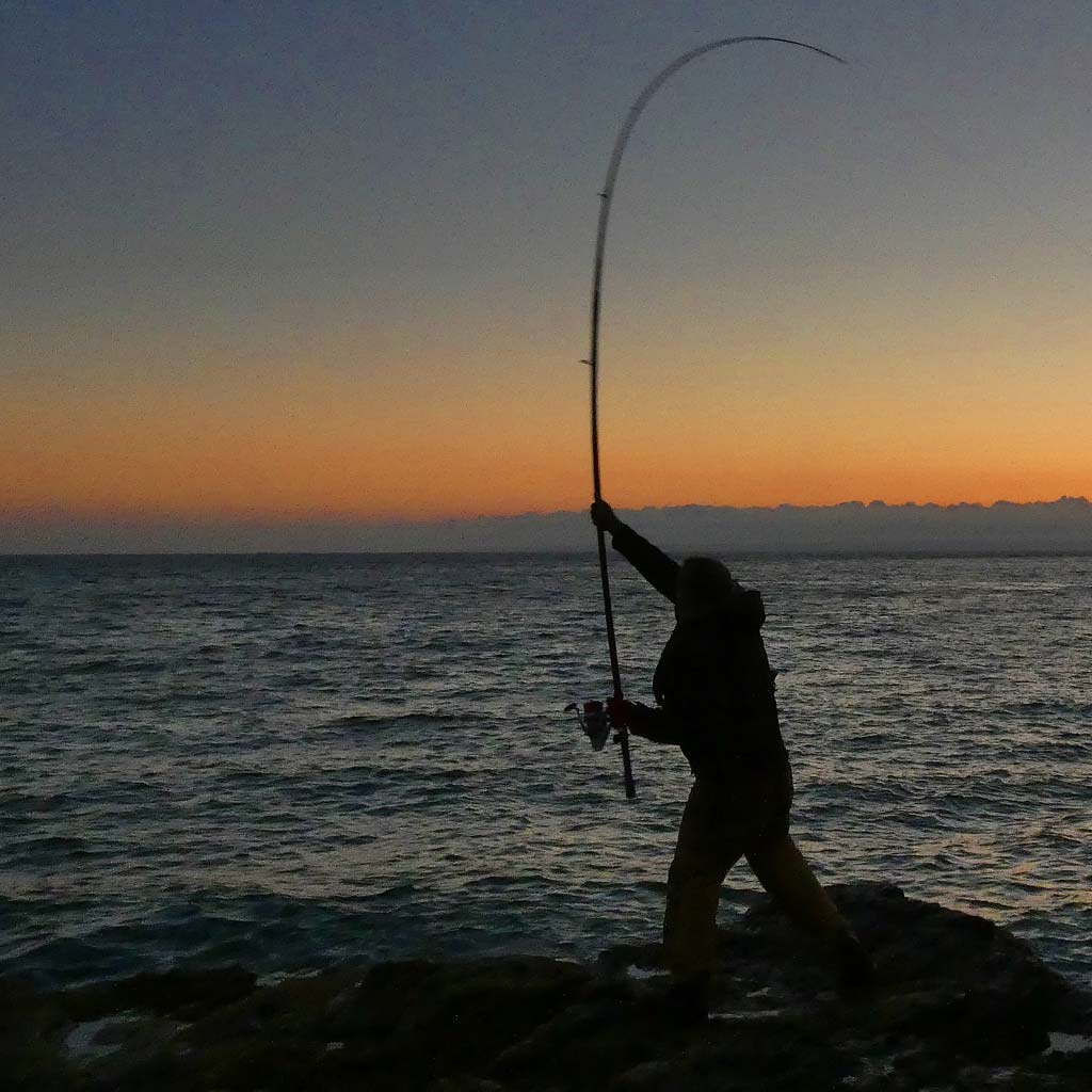 Mark Reed casting from a rock in cornwall